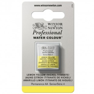 Professional water colour 1/2 Godet - Winsor & Newton