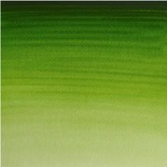 503 - verde vescica permanente (serie 1)