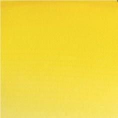 722 - giallo limone winsor (serie 1)
